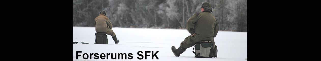 Forserums SFK